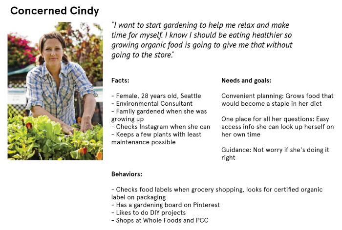 Concerned Cindy Persona