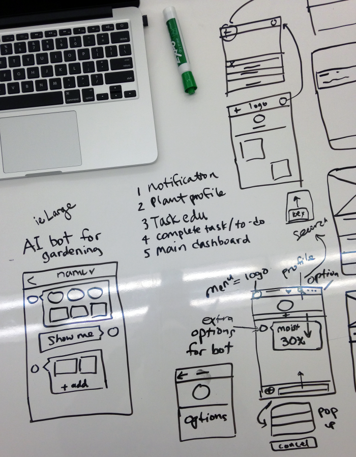 Whiteboarding wireframe ideas for the Sassy Sprout personal bot.